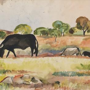 """""""Toros en el Campo"""""""