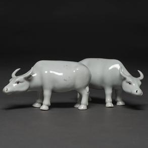 Pareja de búfalos en porcelana china época República. Trabajo Chino, Siglo XX